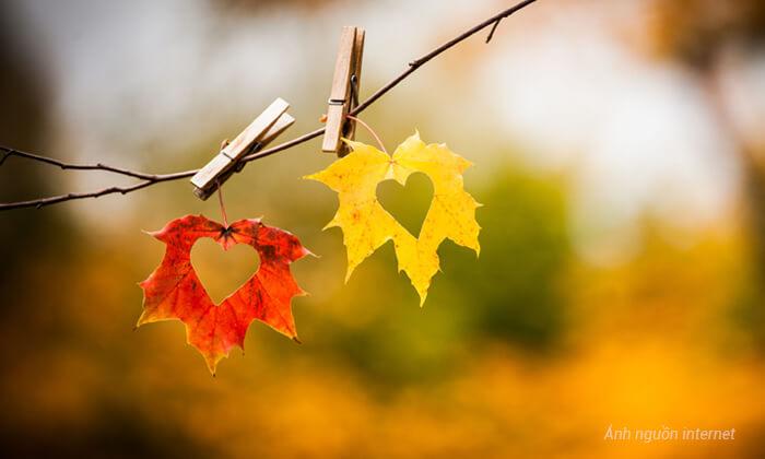 Tâm sự mùa thu
